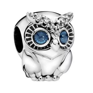 NEW•Silver Blue Eyed Owl DIY charm/bead